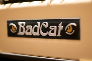 Bad Cat Hot Cat 30